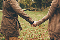 Young couple in love holding hands in an autumnal park, close-up - CHAF000211