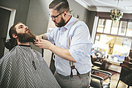Barber cutting beard of a customer - MADF000346
