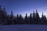 Germany, Saxony-Anhalt, Harz National Park, Landscape in winter, evening twilight - PVCF000461
