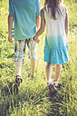 Brother and sister walking hand in hand on a meadow - SARF002020
