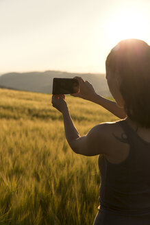 Germany, woman standing in front of a field at sunrise taking a picture with her smartphone - MIDF000501