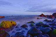 Portugal, Madeira, stony coast in the evening - FDF000112