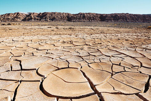 South America, Chile, Dry cracked earth in the Atacama desert - GEMF000253