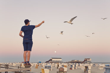 Germany, St Peter-Ording, young man standing on wooden fence feeding seagulls - MEMF000819