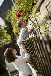Little boy smelling flowers - PAF001449