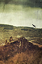 Germany, old castle ruin near Altenahr, flying bird, digitally manipulated - DWIF000542