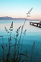 Germany, Bavaria, Chiemgau, Lake Chiemsee, wooden jetty in the evening - HAMF000047