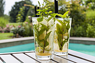 Two glasses of Mojito - JUNF000363