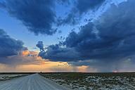 Namibia, Etosha National Park, sunset - FOF008105