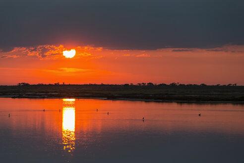 Namibia, Etosha National Park, sunrise at Fisher's Pan - FOF008108