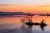Zimbabwe, Urungwe District, Mana Pools National Park, sunset at  Zambezi - FOF008244