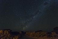 Botswana, Kalahari, Central Kalahari Game Reserve, starry sky with milky way - FOF008272