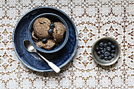 Bowl of vegan blueberry banana ice cream - EVGF001958