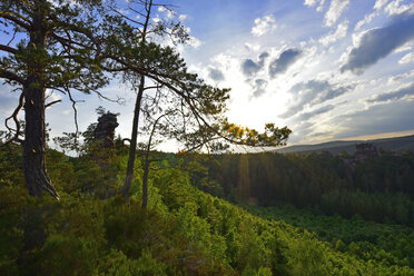 Germany, View to Palatinate Forest against the sun - FDF000125