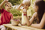 Three children holding up cherries in garden - MFF001948