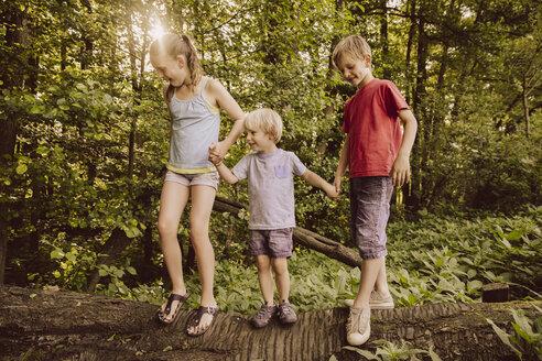 Three children balancing on fallen tree in forest - MFF001928