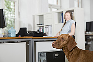 Dog and woman in office - FKF001339