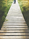 Belgium, High Fens, wooden boardwalk - GWF004315