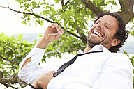 Germany, relaxed businessman lying in tree smoking a joint - MFRF000261