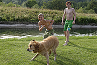 Two boys and a Golden Retriever after bathing - LBF001148