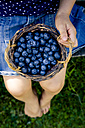 Little girl with wickerbasket of blueberries - LVF003735