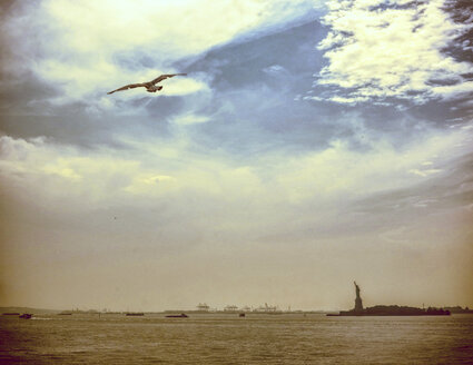 USA, New York City, Seagull flying in the sky with Statue of Liberty in background - ONF000851