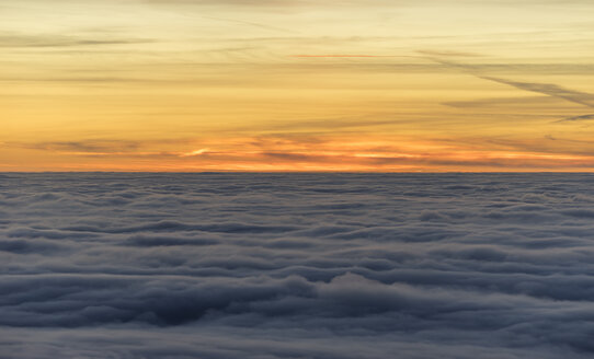Germany, Saxony-Anhalt, Harz National Park, atmospheric inversion  in the evening - PVCF000510
