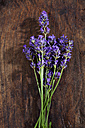 Lavender blossoms on dark wood - CSF025976