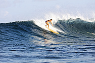 Maledives, South Male Atoll, surfing woman - FAF000064