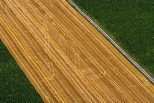 Germany, Bavaria, field with tractor tracks, aerial view, - PEDF000093
