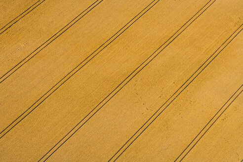 Germany, Bavaria, Field with tractor tracks, aerial view - PEDF000103