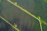Germany, Bavaria, solar plant - PEDF000141