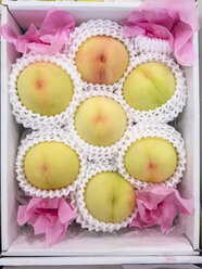 High-end japanese peaches in gift wrapping, Okayama Japan - FLF001224
