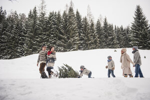 Austria, Altenmarkt-Zauchensee, two couples and two children transporting Christmas tree through winter forest - HHF005378