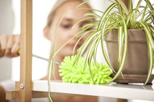 Woman cleansing shelf with potted plant - MFRF000360