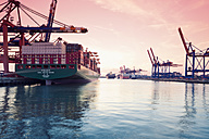 Germany, Hamburg, freight ships at Waltershofer harbour - MS004725