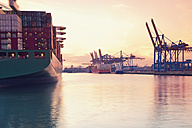 Germany, Hamburg, freight ships at Waltershofer harbour - MSF004708