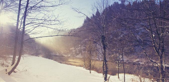 Wupper wetland near Muengsten in winter morning, panorama - DWIF000561