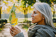 Woman with grey hair wearing grey scarf holding autumn leaf - CHAF001138