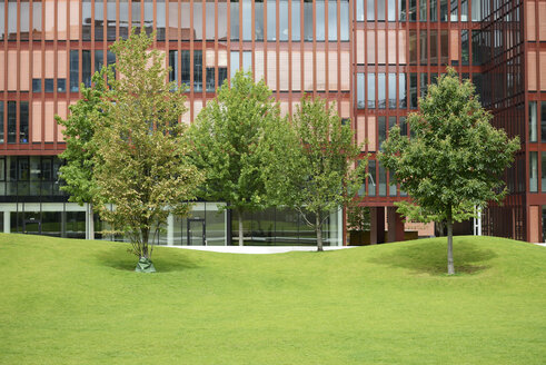 Germany, Hamburg, view to facade of office building at Hafencity with trees and meadow - GUFF000132