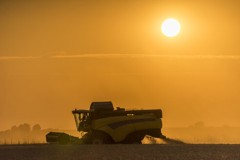 Germany, Lower saxony, combine harvester on field in the evening - PVCF000612