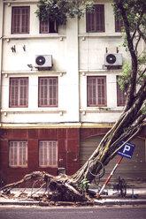 Vietnam, Hanoi, fallen tree on street after typhoon - EHF000140