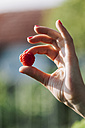 Woman's hand holding raspberry - BZF000200