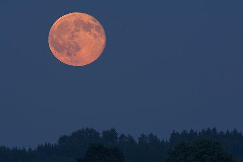 Germany, rise of full moon - UMF000789