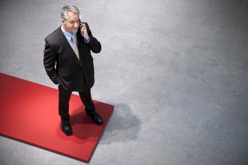Confident businessman on the phone - TOYF001159