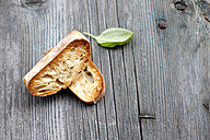 Two slices of roasted ciabatta - KSWF001548