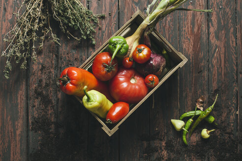 Peppers, chili peppers, tomatoes, onion and savory in a box on wooden background - AKNF000019