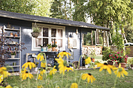 Germany, Eggersdorf, garden shed and flowers - FKF001352
