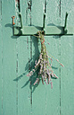 Bunch of lavender hanging on an old coat rack - GISF000141