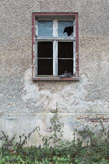 Germany, Brandenburg, facade and window of ramshackle residential house - ASCF000342